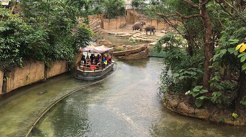 Adventure Zoo